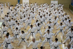 International Karate training, JKAE.